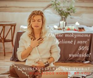 Online mokymai